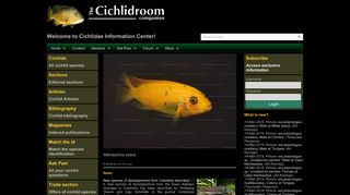 Screenshot of Cichlidae.com main page