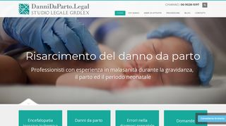 Screenshot of Dannidaparto.legal main page